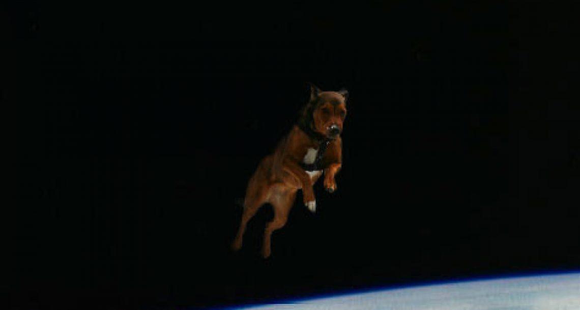 Spacewalk goes awry for Shuttle mascot