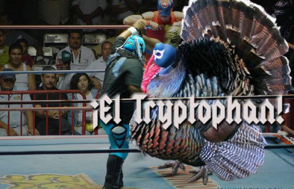 Mexican wrestler El Tryptophan defeats opponents by making them drowsy