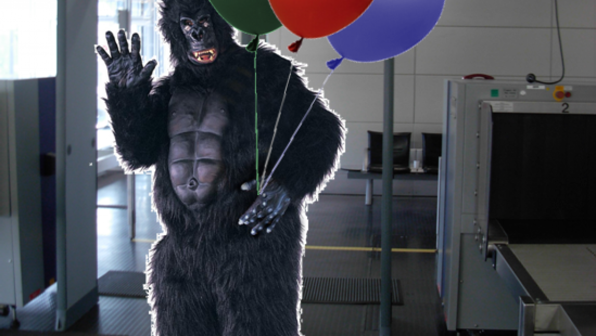 Study finds guy in gorilla suit admitted pretty much anywhere