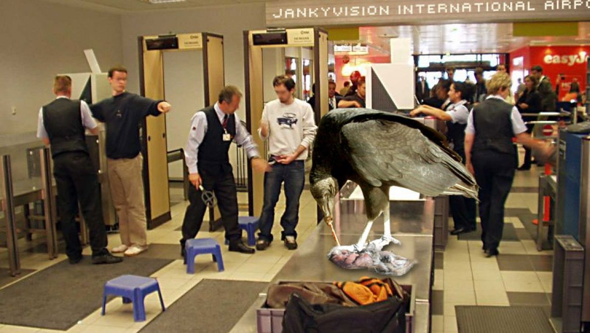 Airlines to charge additional fee for carrion luggage