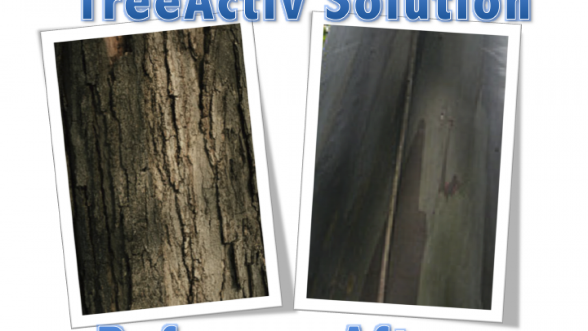 TreeActiv Solution hydrates and repairs chapped, blemished bark