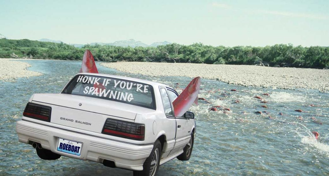 Honk if you're spawning