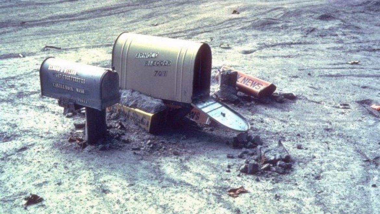 Mud wins in landslide