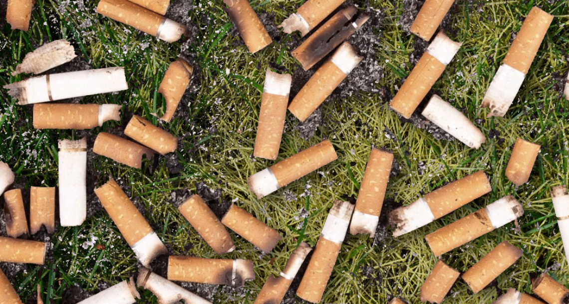 Smoker proud of biodegradable butts in yard