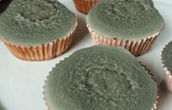 Food safety experts issue warning on Kombucha cupcakes